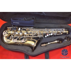 Selmer Aristocrat AS500